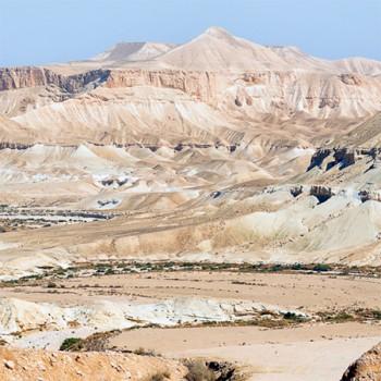 Naturreine, ätherische Ölmischung Negev